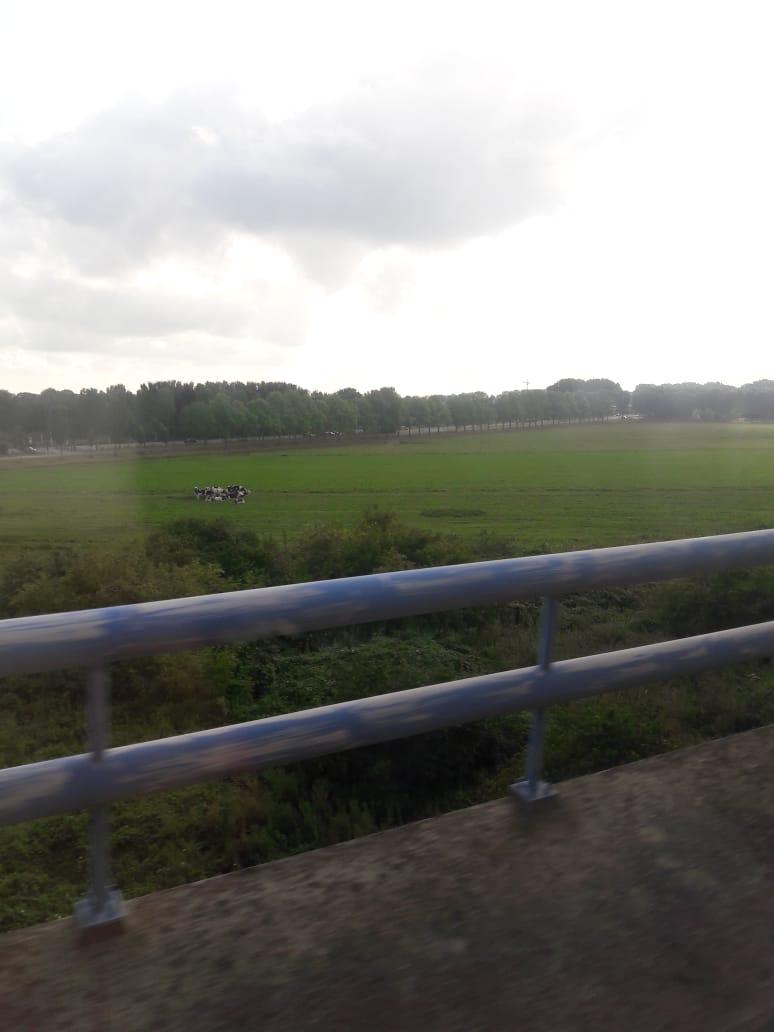 En route Schiphol to Enschede